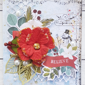 MCS-Bec Genet-Dec LE Kit-Card 2