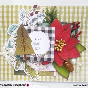 MCS-Bec Genet-Dec LE Kit-Card 3