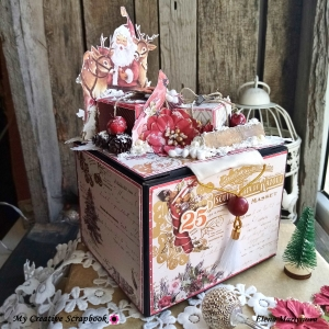 MCS-Elena Martynova-LE Kit-Nov-box1
