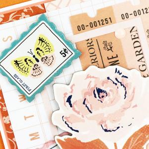 MCS-Jeanne-Jachna-October-Main-Kit-LO8-CU1