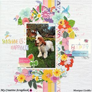 MCS-MoniqueLiedtke-March Main Kit-LO2