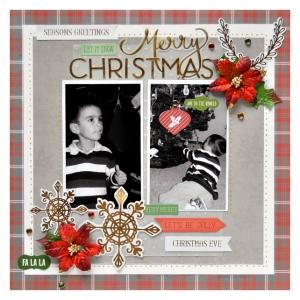 MCS-ChristineM-DecemberMainKit-LO2.jpg