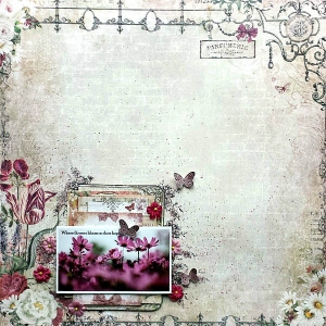 MCS-Debbie Burns-LE Kit LO2.jpg