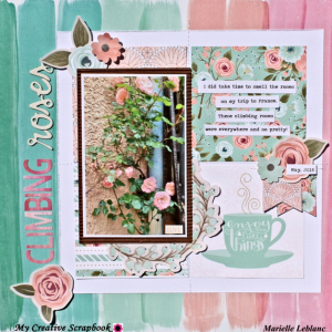 MCS-June main kit-Marielle LeBlanc-LO1