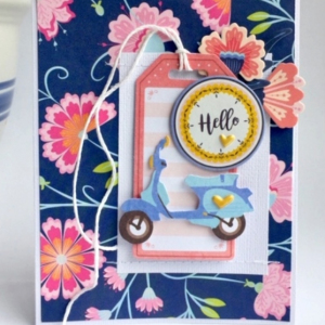 MCS-Marielle LeBlanc-May main kit -card 1-1