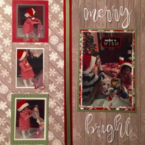 MCS-Patty McGovern-pugh Main Kit3