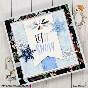 Jan-2021-MCS-Teri-JanCreative-Kit-Card2