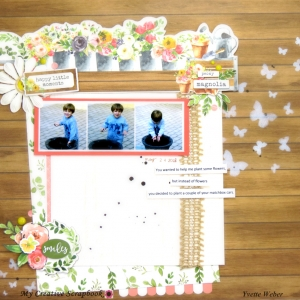 MCS-Yvette Weber-May Main Kit-LO3