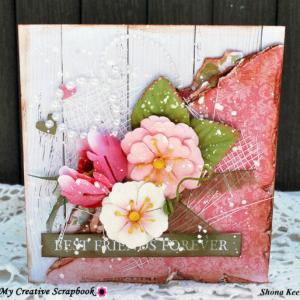 Shona card July LE Kit