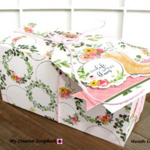 MCS-Marielle LeBlanc-May main kit-Box and tag